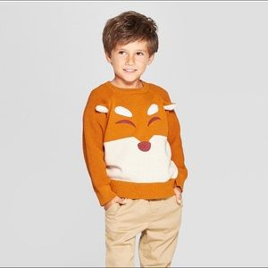 Cat and Jack Boys Fox Sweater